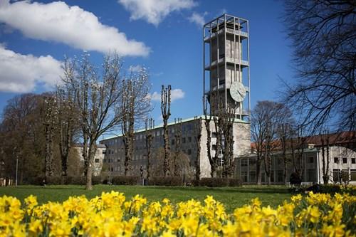AarhusGuiderne - byvandringer 2021: Rundvisning på Aarhus Rådhus - torsdage kl. 11.00