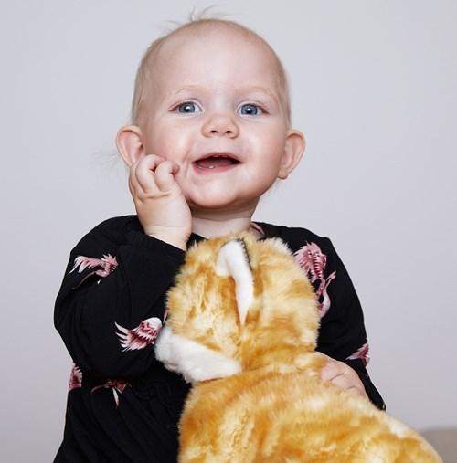 Barselshuset: Workshop: Tegn til baby - Lær din baby de første tegn (0-12 mdr)